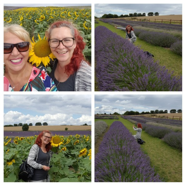 "Annie Jaques ""Sunshine and sunflowers and the smell of lavender wafting through the air....a perfect day"" - 1st August 2017"
