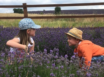 """Gemma Dilley """"Favourite Pics from our Visit"""" - 25th August 2016"""