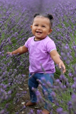 """Sam McLean """"11 month old Aria's first trip to Hitchin Lavender"""" - 30th July 2017"""