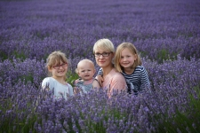 Hitchin-Lavender-amazing-4