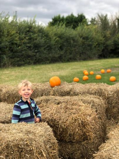 Toby in bales